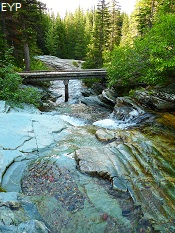 Ptarmigan Creek, Iceberg Lake Trail, Glacier National Park