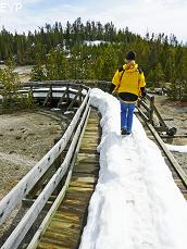Norris Geyser Basin, Norris Junction Area, Yellowstone National Park