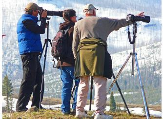 Wildlife photographers, Lamar Valley, Yellowstone National Park