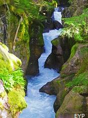 Avalanche Gorge, Lake McDonald Area, Glacier National Park