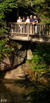 Trail of the Cedars, Lake McDonald Area, Glacier National Park