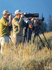 Wildlife Photographers, Oxbow Bend, Grand Teton National Park