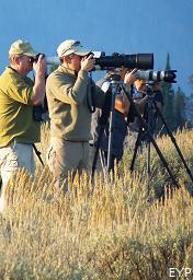 Photographers, Grand Teton National Park