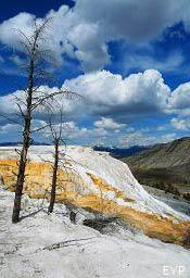 Mammoth Hot Springs, Yellowstone National Park