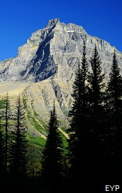 Mount Merritt, Stoney Indian Pass Trail, Glacier National Park