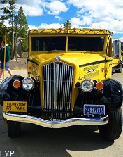 Historic Yellow Bus, Yellowstone National Park