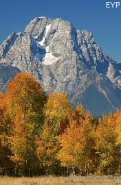 Mount Moran, Oxbow Bend, Grand Teton National Park