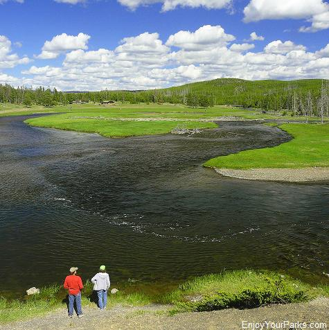 Madison River near Madison Junction, Yellowstone National Park