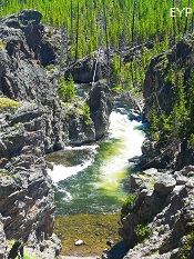 Firehole River Drive, Madison Junction Area, Yellowstone National Park