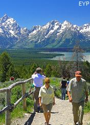 Jackson Point Overlook, Signal Mountain Area, Grand Teton National Park